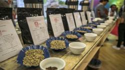 Rueda virtual Cafés del Perú para los Estados Unidos concretó negocios por US$ 7.3 millones