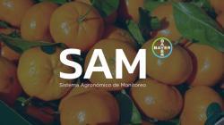 SAM: Programa de monitoreo y trazabilidad que permite a productores de cítricos tomar decisiones adecuadas en tiempo real