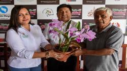 San Martín busca impulsar proyecto de orquídea