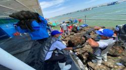 Sanipes revaluará la bahía de Sechura para determinar la calidad e idoneidad de los recursos hidrobiológicos