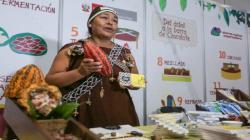 """""""Sector cacaotero peruano se origina de un sistema de producción sostenible, con respeto al ambiente y productores más competitivos"""""""