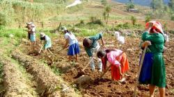 Segunda Reforma Agraria… tan retrógrada y acomplejada como la Primera