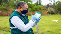 Senasa determinará condición sanitaria de la producción de cuencas lecheras en San Martín