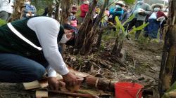 Senasa y municipalidad de Chalamarca unen esfuerzos con pequeños productores de Chota para erradicar mosca de la fruta