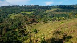 Serfor identifica 8.2 millones de hectáreas degradadas para restaurar en el Perú