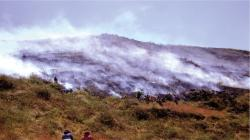 Serfor pide a la población no quemar residuos agrícolas y pastos para evitar incendios forestales