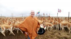 Serfor propone hoja de ruta para mejorar el aprovechamiento sostenible de la vicuña a nivel nacional
