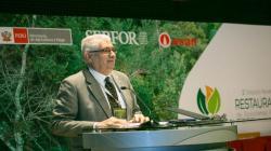 Serfor relanzará las concesiones forestales con nuevo enfoque de desarrollo sostenible