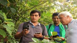 Solidaridad y Cámara de Café y Cacao lanzan cursos online en agricultura sostenible