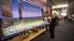 Superalimentos peruanos generan negocios por US$ 17.5 millones en la rueda Super Foods Perú- Perú Natura 2019