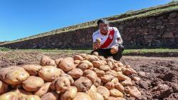 Suspensión de exportación de hortalizas a Bolivia carece de argumentos técnicos