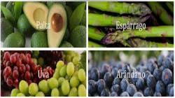 TLC con Australia beneficiará a productores de palta, espárragos, uvas de mesa, arándanos y mandarinas de Ica