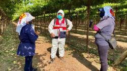 Trabajadores productivos son los menos beneficiados con nueva ley agraria
