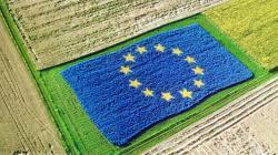 UE acuerda reforma que revolucionará su agricultura para que sea más ecológica