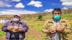 Urge que FAE-Agro coloque créditos para la campaña agrícola 2020-2021