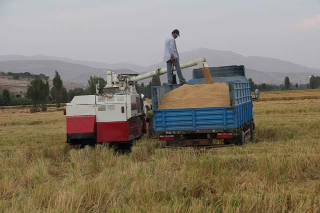 BUSCAN RENEGOCIAR DEUDAS DE AGRICULTORES PERJUDICADOS POR EL PARO