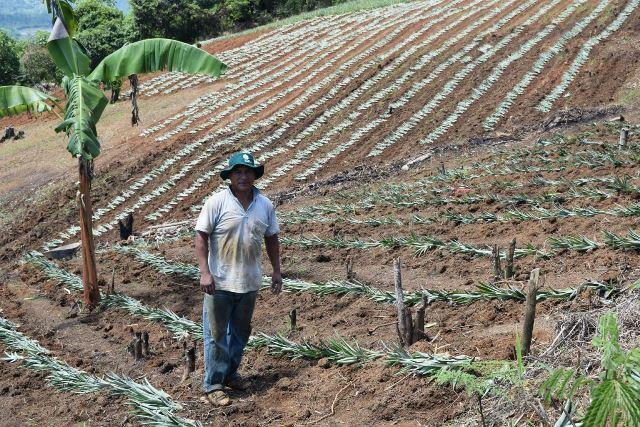 CUSCO: INIA APOYARÁ AL DESARROLLO AGRARIO DE PRODUCTORES DE KIMBIRI