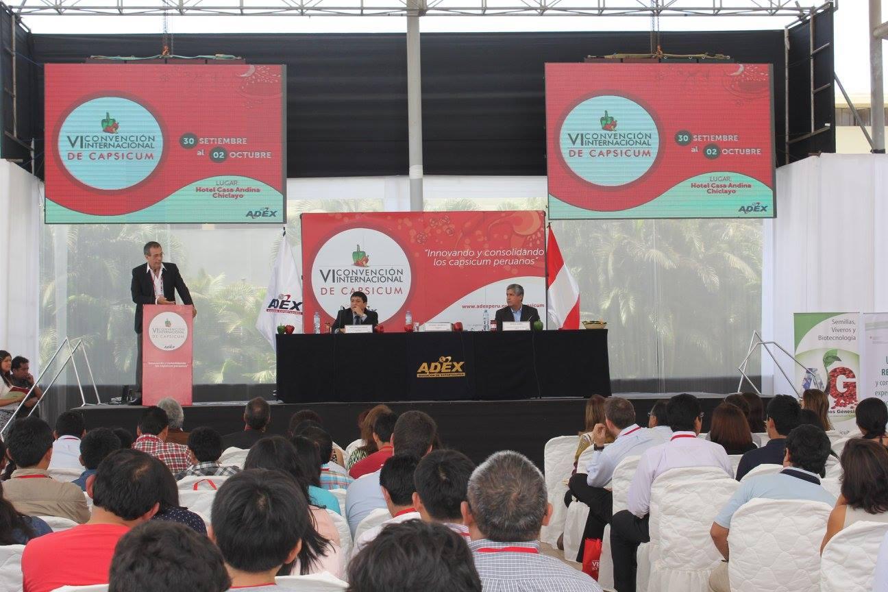 PERÚ CULTIVA ENTRE 15 MIL A 18 MIL HECTÁREAS DE CAPSICUM AL AÑO