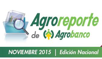 Agroreporte Noviembre 2015