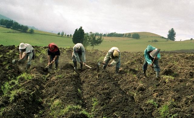 SEGÚN MINAGRI, 860.000 PERSONAS QUE VIVEN DEL AGRO SUPERARON LA POBREZA