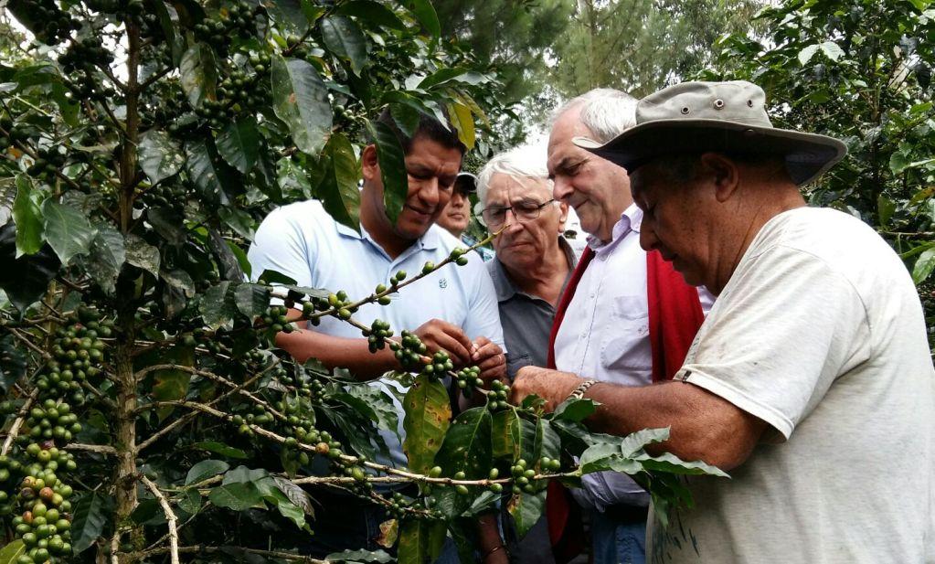CUSCO EXPORTÓ PRODUCTOS AGROINUDSTRIALES POR US$ 4.6 MILLONES EN LOS PRIMEROS CUATRO MESES DEL 2016