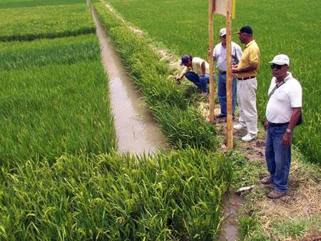 PROYECTOS DE OBRAS POR IMPUESTOS EN EL AGRO SERÁN FINANCIADOS POR MI RIEGO