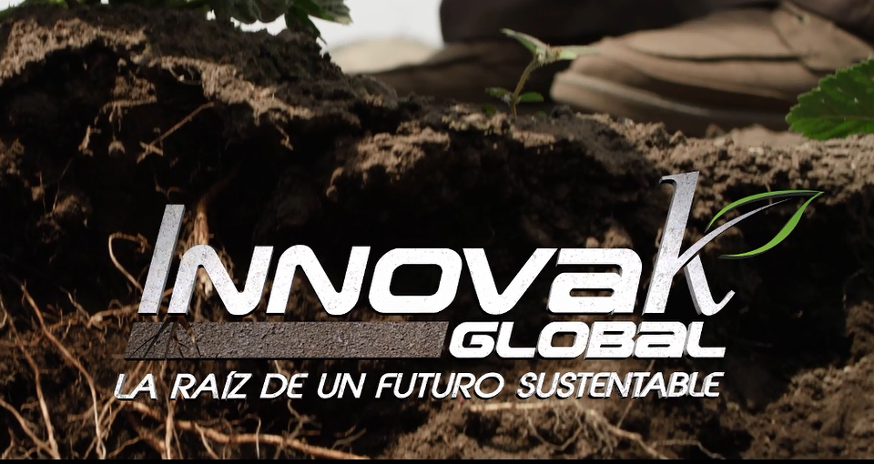 "INNOVAK GLOBAL:  ""LA RAIZ DE UN FUTURO SUSTENTABLE"""