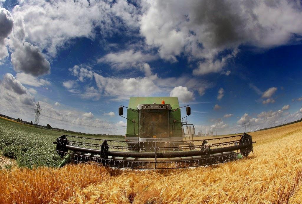 Agricultura desempeña papel clave para reducir emisiones de gases de efecto invernadero