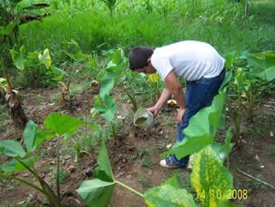 Agro Rural destinará guano orgánico de isla a pequeños productores