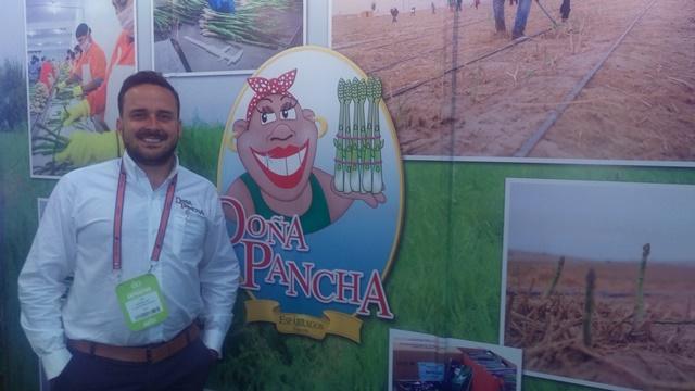 Doña Pancha proyecta instalar otras 300 hectáreas de espárragos
