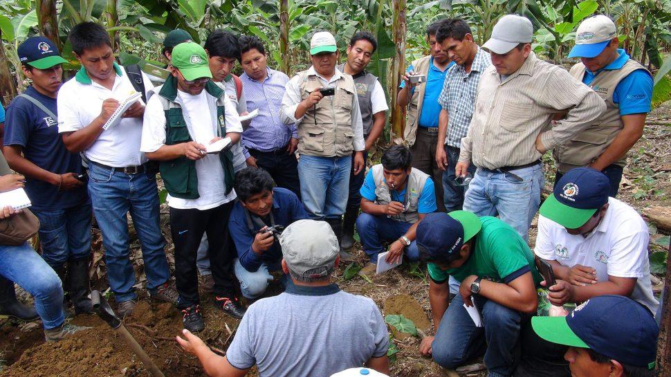 Devida capacitó a cacaoteros en análisis de suelos y abonamiento