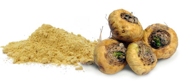 Maca peruana ingresa a categoría de súper alimentos en Turquía