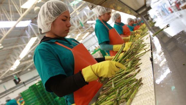 Agrícola Chavín de Huantar refuerza su proceso de maquila con dos plantas de procesamiento