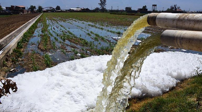 La mala calidad del agua usada para los sembríos frenaría la agroexportación