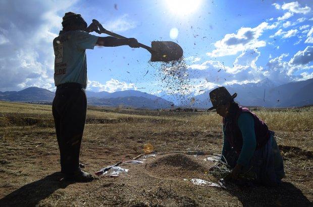 Conveagro: Gobierno tiene que informar cómo ejecutará presupuesto de programas agrarios y a qué i...