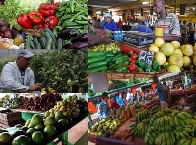 Apega propone la creación de un Sistema Nacional de Distribución de Alimentos