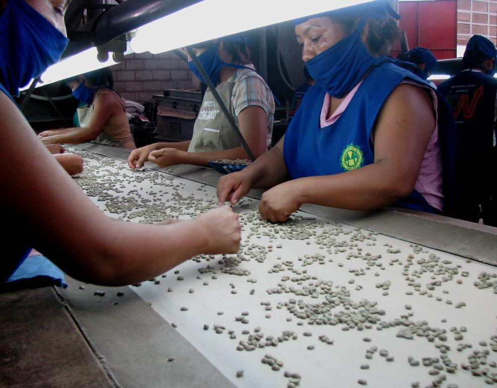 Estados Unidos fue el principal destino de las legumbres y menestras peruanas en el periodo enero-no...