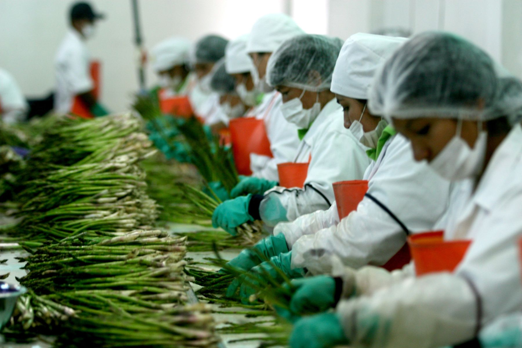 Arequipa, Trujillo e Ica lideran generación de empleo a nivel nacional
