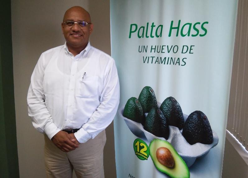 Exportaciones de palta Hass de Perú al continente asiático se duplicarían en campaña 2017