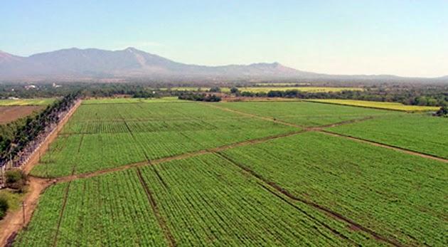 Consejo de Lambayeque da luz verde a transferencia en irrigación Olmos