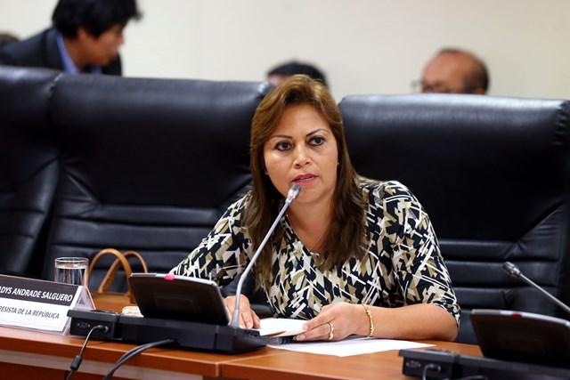 Congreso declara de necesidad pública e interés nacional la creación e implementación del Instituto Nacional de Camélidos Sudamericanos