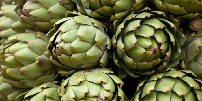 Alsur invierte US$ 1 millón en renovación de máquina agrícola