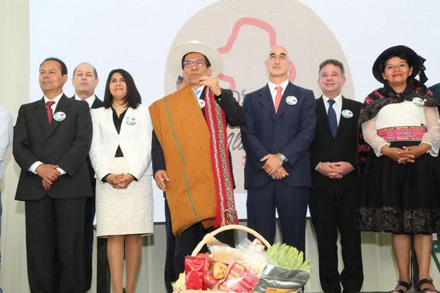 Lanzarán programa multisectorial para combatir la anemia