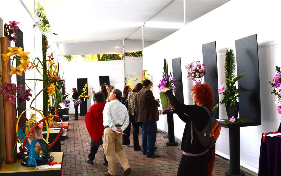 Hoy se inicia el Festival Internacional de Orquídeas en Miraflores