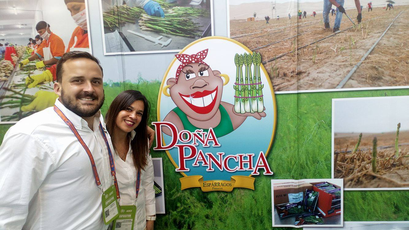 Doña Pancha exportaría 1.250 toneladas de espárragos frescos este año