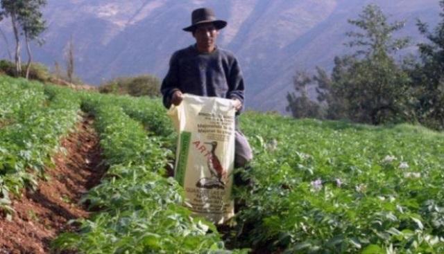 Minagri aprobó 289 proyectos agrarios para pequeños y medianos productores