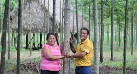 Acopagro gestiona huella de carbono  para mitigar cambio climático