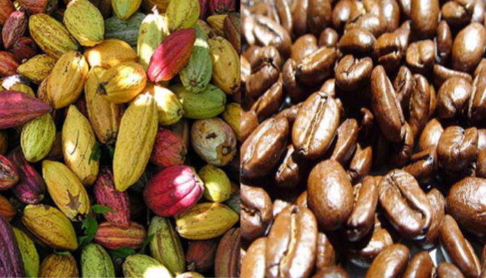 CPC realizará la XXI Convención Nacional del Café y Cacao y el I Concurso de Cafeterías de Lima