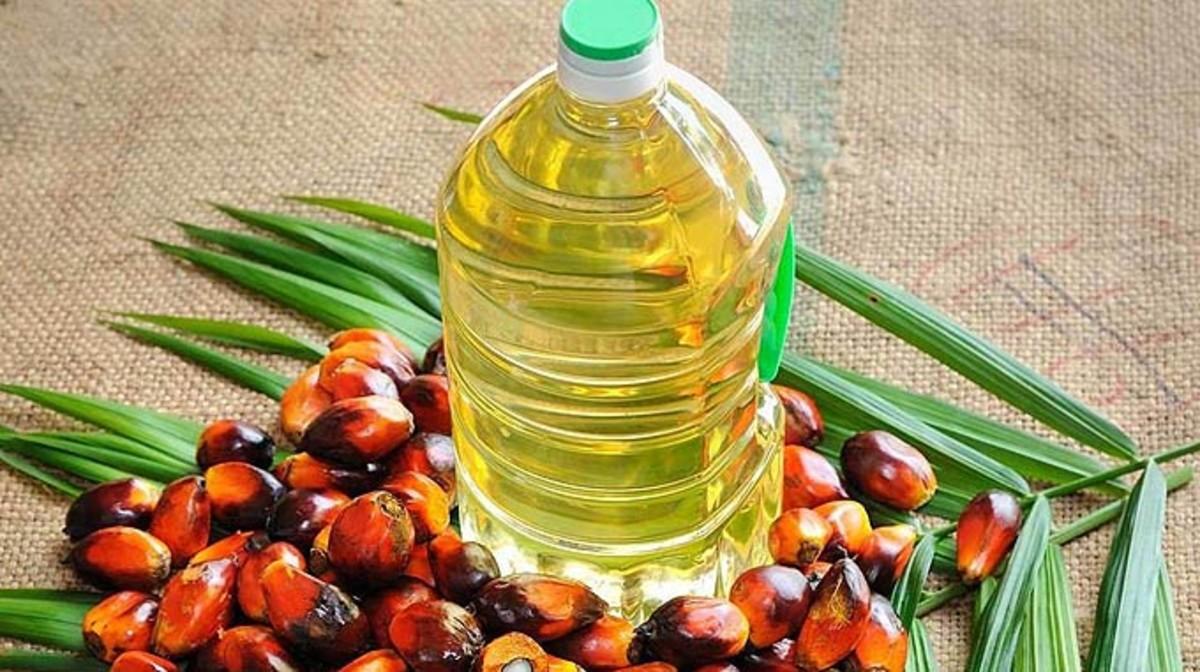 Producción mundial de aceite de palma alcanzó las 64.8 millones de toneladas en 2017