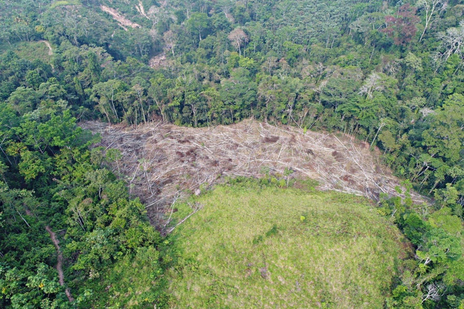 Ministros de agricultura y ambiente de la región analizarán restauración de tierras degradadas